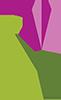 Chilliwack Tulips Logo